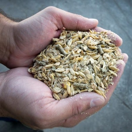 Certified Processing Animal Feed Material & Recycling